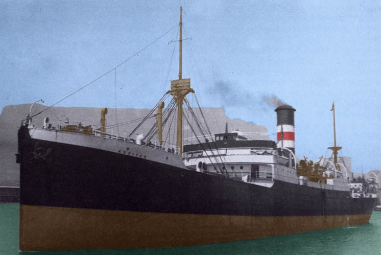 SS Auditor