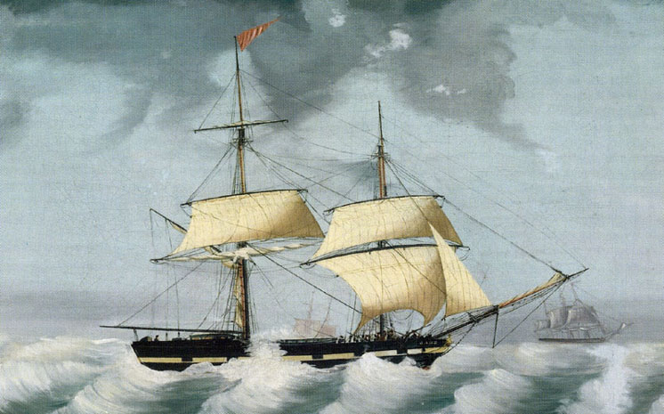Brig Jane, Harrison Fleet 1836-1849