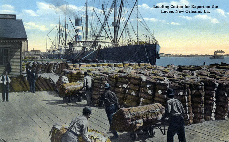 Loading cotton, port, New Orleans, circa 1900
